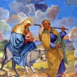 Flight to Egypt — Stock Photo