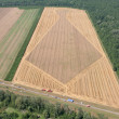 Aerial View: Golden Wheat field — Stock Photo