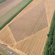 Stock Photo: Aerial View: Golden Wheat field
