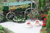 Old wooden cart with flowers — Stock Photo