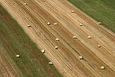 Aerial view of harvest fields in summertime — Stock Photo