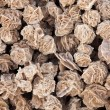 Desert roses texture, close up — Stock Photo