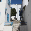 Sidi Bou Said - typical building — Stock Photo #15318793