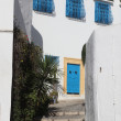 Sidi Bou Said - typical building — Stock Photo #15318851