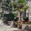 Garden in Hum, the smallest city in the world, Istria, Croatia — Stock Photo