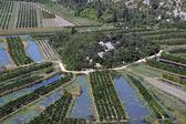 Irrigation scheme on river Neretva - Croatia — Stock Photo