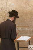 Orthodox man prayers at Western wall of Jerusalem — 图库照片