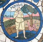 São pedro, mosaico em frente à igreja do monte das bem-aventuranças — Foto Stock