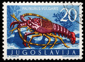 Stamp printed in Yugoslavia shows the spiny lobster — Stock Photo