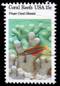 Stamp printed in the USA shows Coral Reefs, Finger Coral, Hawaii — Stock Photo