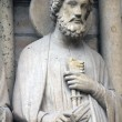 Saint Peter, Notre Dame Cathedral, Paris — Stock Photo