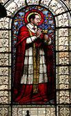 Saint Charles Borromeo — Fotografia Stock
