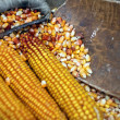Maize cobs — Stock Photo