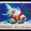 Stamp printed by Angola shows Goldfish — Stock Photo #29806515