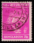 BANGLADESH - CIRCA 1973: Postage stamps printed in Bangladesh, shows a tiger — Stock Photo