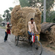 Rickshaw rider transports rice from the farm home — Stock Photo