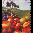 Stamp printed in Australishows fruits — Stock Photo #37547965