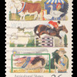 Stamp printed in Australia shows the Livestock, Agricultural Shows series — Stock Photo #37550973