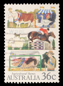 Stamp printed in Australia shows the Livestock, Agricultural Shows series — Stock Photo