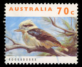 Stamp printed in Australia shows a Kookaburra bird — Foto de Stock