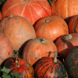 Pumpkins — Stock Photo #39888523