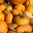 Pumpkins — Stock Photo #39888587