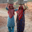 Постер, плакат: Brick field workers carrying complete finish brick from the kiln
