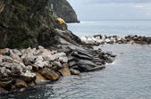 Cliffs along the Mediterranean sea in Cinque Terre, Italy. — Stock Photo