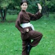 Woman practicing kung fu — Foto Stock