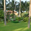 Stock Photo: Hammock in manicured park garden