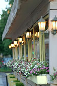 House wall with lamps and flowers of a petunia — Foto Stock