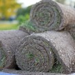 Stock Photo: Turf grass rolls
