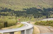 пышные дороги — Стоковое фото