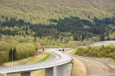 Curvy road — Stock Photo