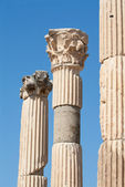 Corinthian columns in ancient Ephesus, Turkey — Stock Photo