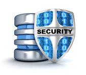Shield and database — Stock Photo