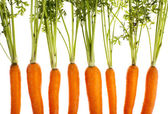 Carrots, completely isolated on whit — Stock Photo