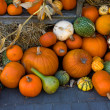 Pumpkins as fall decoration — Stock Photo