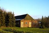 Stary stodoła — Zdjęcie stockowe