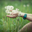 Dandelions in woman's hand — Stock Photo