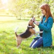 Girl playing with her  dog in autumn park — Stock fotografie