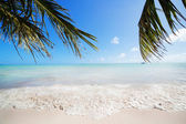 Tide on a tropical beach — Stock Photo