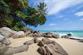 Beautiful tropical beach on Phi Phi island — Stock Photo
