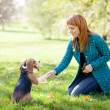 Girl playing with her dog in autumn park — Stock Photo #22165063