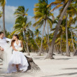 Bride and groom sitting on a palm tree on a tropical beach — Стоковая фотография