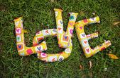 Word LOVE on green grass. — Stock Photo