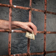 Stock Photo: Prison corruption