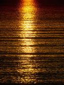 's avonds zee — Stockfoto