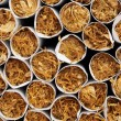 Stock Photo: Tobacco