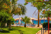 Beach at the luxury hotel, Sharm el Sheikh, Egypt — Foto de Stock